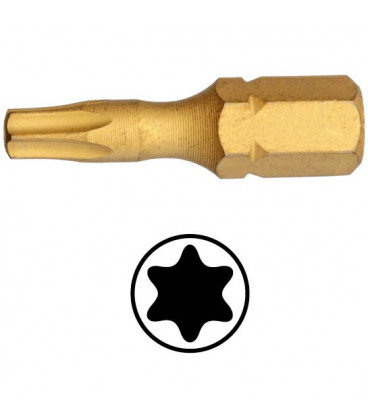 WEKADOR Bit torx 15 - 25 mm torzní TIN